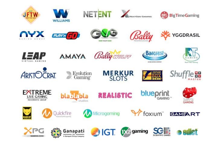 Top Software Providers